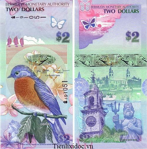 2 Dollar Bermuda