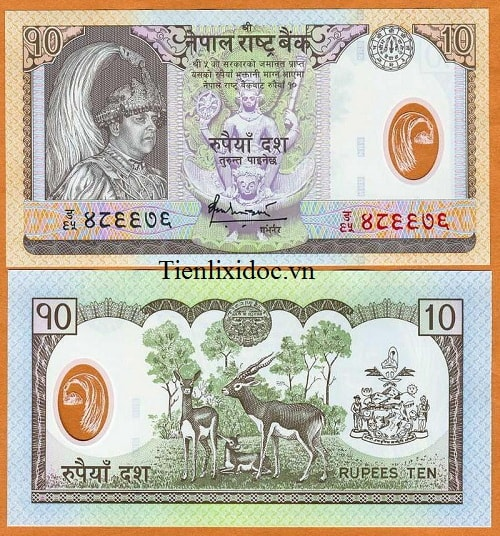 Nepal 10 Rupees - polymer