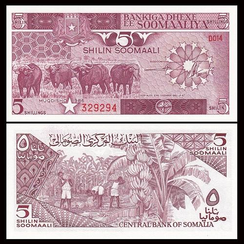 Somalia 5 shillings 1986