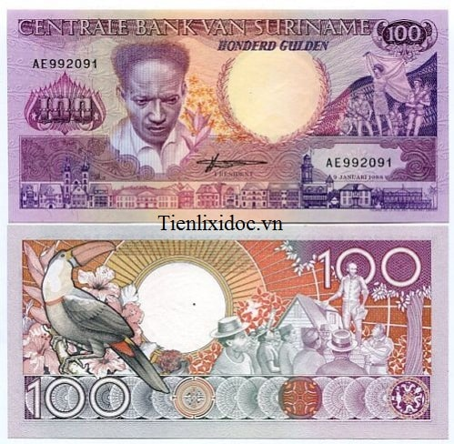 Suriname 100 dollars