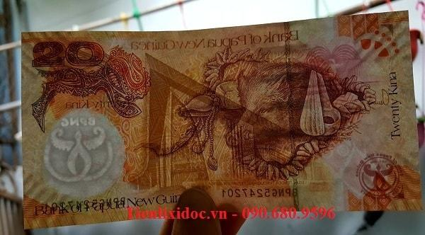 Tiền Con Heo Papua New Guinea