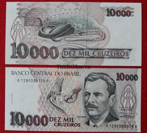 Tiền Lì Xì Người Tuổi Rắn - Tiền Brazil